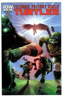 Teenage Mutant Ninja Turtles 31 Retailer Incentive RI Cover IDW 2014 HTF
