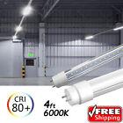 10-100 PACK LED G13 4FT 4 Foot T8 Tube Light Bulbs 18W 6000K CLEAR OR MILKY LENS
