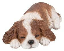 Vivid Arts - PET PALS SLEEPING PUPPY DOG & KCS BOX - King Charles Spaniel