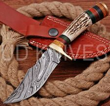 8 INCH UD CUSTOM DAMASCUS STEEL HUNTER KNIFE Stag/ANTLER  HANDLE B7-11557