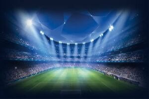 Huge Fantasy Football Stadium Wall Stickers Wallpaper 397