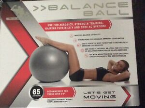 New Silver 1 Balance Ball 65 cm Ball Pump Exercise Guide