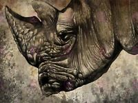 Painting Drawing Design Sketch Animal Rhino Head Horn Canvas Art Print