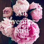 an evening bird preloved