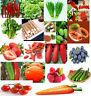 Multiple Varieties Delicious Fruit Bulk Vegetable Organic Home Garden Plant Seed