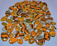 Natural Bumble bee jasper Loose Gemstone Cabochon Mix Shape Wholesale Lot
