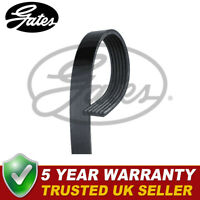 Gates V-Ribbed Belts Fits 500L Multipla Bravo RX 147 - 6PK1038