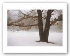 Tranquility David Lorenz Winston Art Print 8x12