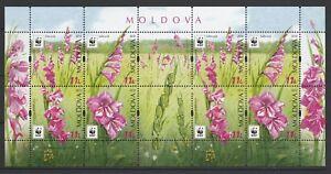 Moldova 2016 WWF Flowers - Protected Flora: Turkish Marsh Gladiolus 8 Minisheet