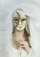 STUNNING MASQUERADE BALL PARTY MASK CANVAS PICTURE #39 WALL HANGING ART A1