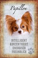 Papillon Hund Dog Blechschild Schild gewölbt Metal Tin Sign 20 x 30 cm