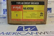 Fpe Njl431250 Njl 3P 480V 250 Amp Circuit Breaker - New In Box