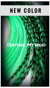 Feathers Pick Length, 7 - 16 In Long - Hair, Fly Tying - Free DIY Kit Over 25