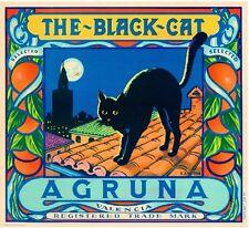Valencia Spain Spanish The Black Cat Orange Citrus Fruit Crate Label Art Print