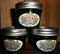 Fresh BLUEBERRY JAM 1/4 Pint (4 oz.) Organic, No Chemicals, FREE SHIPPING