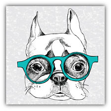 Funny French Bulldog Car Bumper Sticker Decal 5'' x 5''