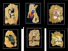 1x24 Prints- PAPERBARK ART by John Gray..- ART GALLERY OWNERS - RRP:$360