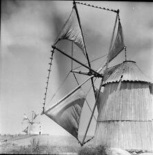 PENICHE c. 1950 - Moulins à Vent Portugal - Négatif 6 x 6 - Por 398