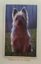 Australian Silky Terrier Dog Fridge Magnet - M660 F