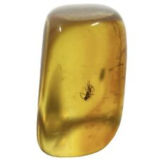 More details for baltic amber with fossil insect inclusion fse381 ✔100%genuine✔ukseller