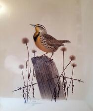 1993 Signed Wm Zimmerman Western Meadowlark Wildlife Lovers Original Print