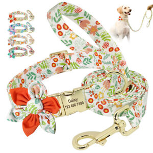 Personalized Dog Tags Engraved Cat Puppy Pet ID Name Collar and Leash Tag Nylon