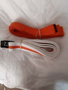 2 x judo or Karate belts used