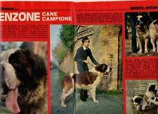 MA129-Clipping-Ritaglio 1973 Lorenzone Cane Campione Bagnara