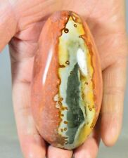 "3.5"" Polished POLYCHROME JASPER Crystal Palm Stone Madagascar, Africa"