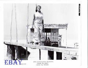 Susanne Benton busty VINTAGE Photo Cover Me Babe