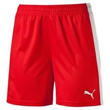 PUMA Handball-Bekleidung für Herren