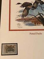 $7.50 US Duck Stamp MNH Limited Edition Numbered Pintail Ducks Print  # 797/800