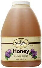 NEW GloryBee Clover Blend Honey 5 Pound FREE SHIPPING