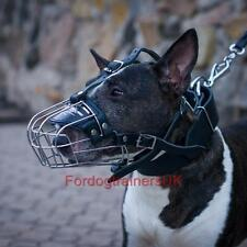 English Bull Terrier Muzzle Size | Basket Dog Muzzle for English Bull Terrier