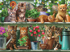 White Mountain Puzzles Spring Kittens - 1000 Piece Jigsaw Puzzle