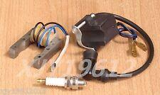 Stator Magneto Ignition Coil CDI Spark Plug 49cc 66cc 80cc 2-Stroke Motorized