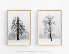 Tree Prints, Minimalist Wall Art, Set of 2 5x7 Prints, Modern Home Decor