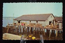 Postcard Lobster Wharf Maine ME