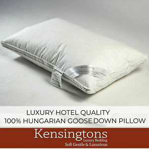 Kensingtons® 4 x Hungarian Goose  Down Pillows 500TC Cotton Cover 1000g