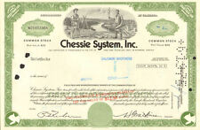 Chessie System now CSX Richmond Jacksonville railroad stock certificate share