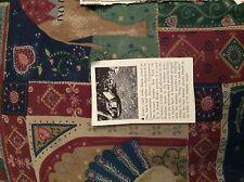 r7 ephemera 1944 ww2 film article small jacare set in brazil