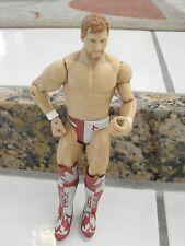 wwe wwf Mattel 2011 Wrestler Action Figure Daniel Brian