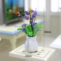 Mini Dollhouse Miniature Green Plant Flower in Pot AU Decoration Garden H9K5