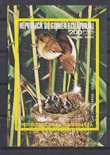 Guinea Ecuatorial - Vogels/Birds/Vögel