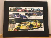 Original Steve Park Nascar Matted Framed Print Artist Signed Bill Rankin 2004