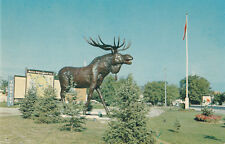 World's Largest Moose Trans Canada Highway DRYDEN Ontario Alex Wilson Postcard