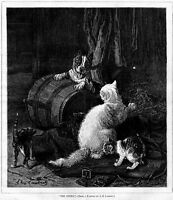 DOG AND CATS ENEMY OR PLAYMATES, ANTIQUE 1876 ENGRAVING