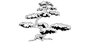 Japanese Bonsai Tree Vinyl Decal