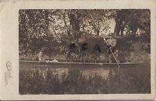 WW1 Verwundet Offiziere Entspannend Auf Der Themse IN Punt At Oxford