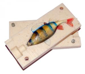 Bait Mold Perch Anatomic Fishing Lure Shad Soft Plastic 50-74 mm